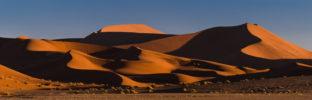 AFRICA – NAMIBIA – DUNES