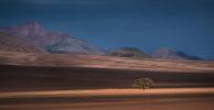 AFRICA – NAMIBIA – LIMELIGHT