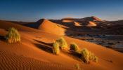 AFRICA – NAMIBIA – SOSSUSVLEI
