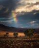 AFRICA – NAMIBIA – UNEXPECTED