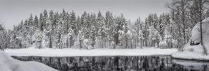 EUROPE – FINLAND – BLACK WATER
