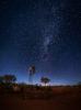 AUSTRALIA – KARIJINI – STARHOTEL
